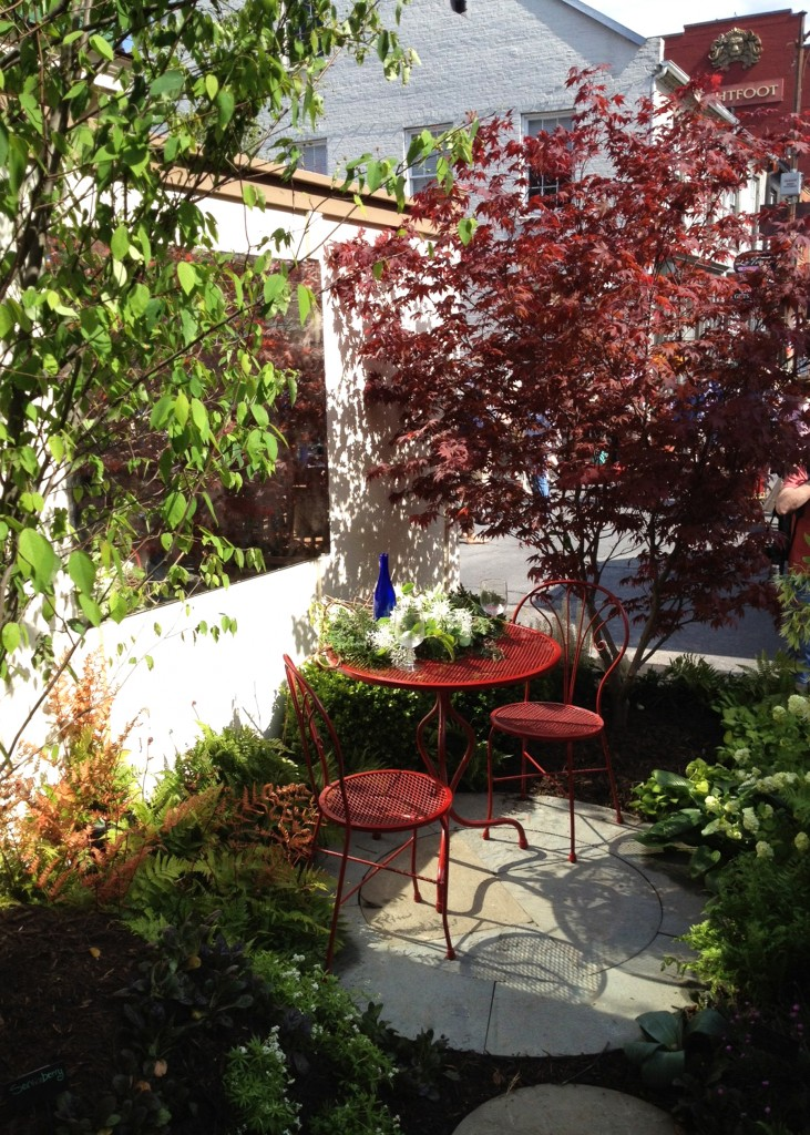 Instant garden pic 6